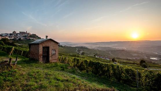 Piemont - Sunset in Langhe © mundo Reisen GmbH & Co KG